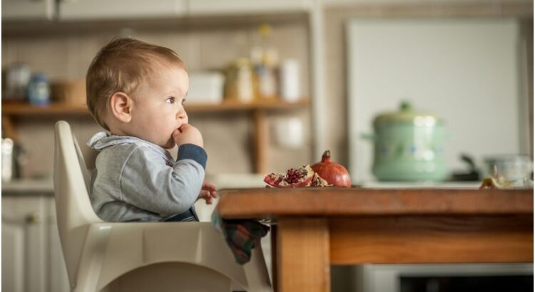 high chair alternatives for toddlers